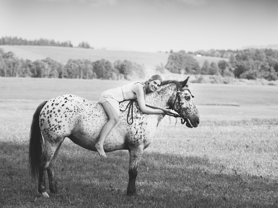 Fotograf, Wangen im Allgäu, Pferdefotografie Allgäu.005
