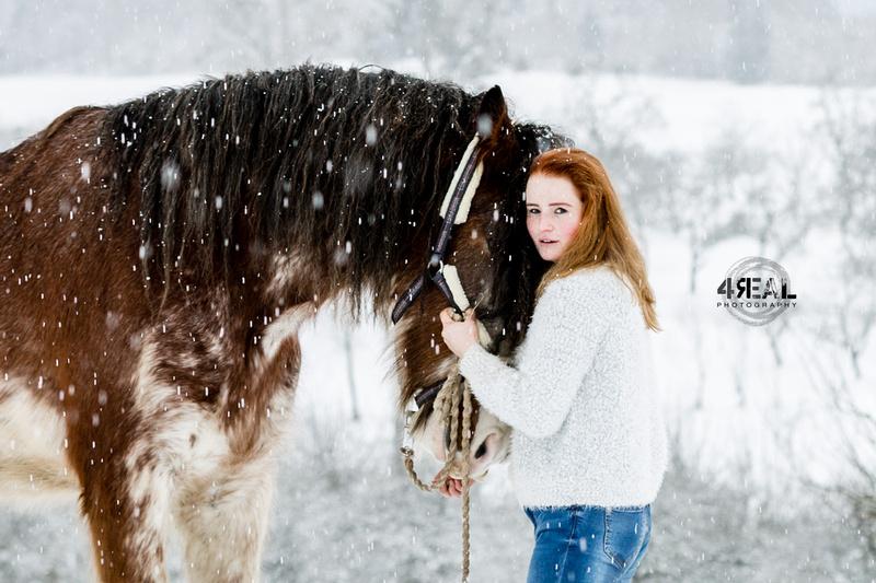 Fotograf,Tierfotograf,Pferdefotoshooting,Pferdefotos,Lindau,Kisslegg,Wangen im Allgäu, Ravensburg,Tettnang,Bregenz,Memmingen,Bad-waldsee6