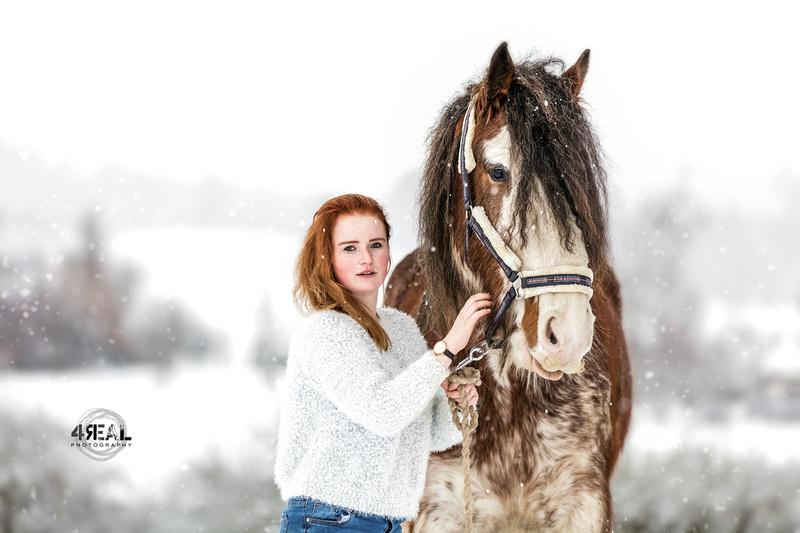Fotograf,Tierfotograf,Pferdefotoshooting,Pferdefotos,Lindau,Kisslegg,Wangen im Allgäu, Ravensburg,Tettnang,Bregenz,Memmingen,Bad-waldsee1