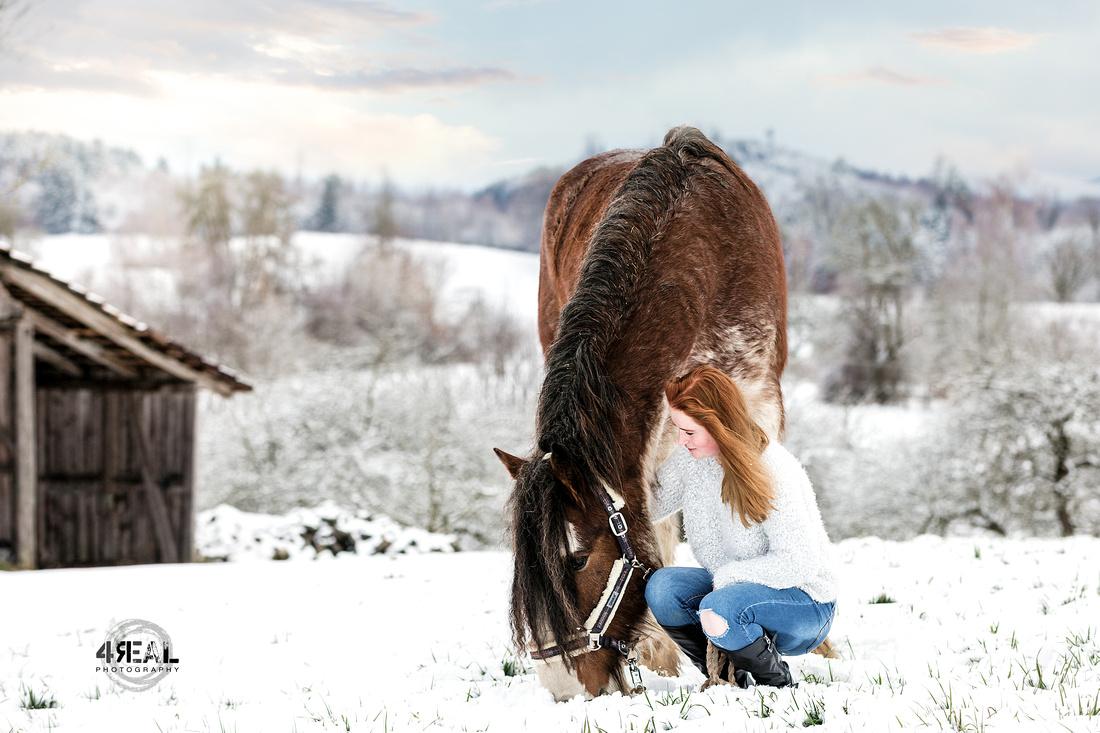 Fotograf,Tierfotograf,Pferdefotoshooting,Pferdefotos,Lindau,Kisslegg,Wangen im Allgäu, Ravensburg,Tettnang,Bregenz,Memmingen,Bad-waldsee2