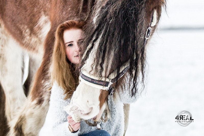 Fotograf,Tierfotograf,Pferdefotoshooting,Pferdefotos,Lindau,Kisslegg,Wangen im Allgäu, Ravensburg,Tettnang,Bregenz,Memmingen,Bad-waldsee4 (1)